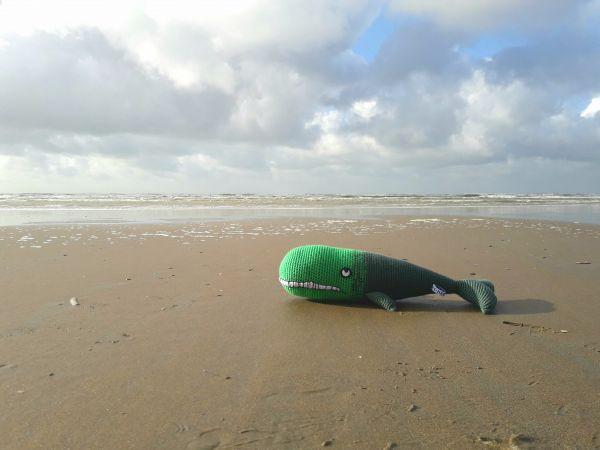 Groene walvis